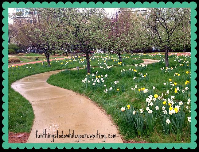 spring pathfinal