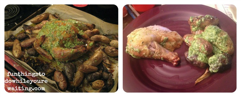 chicken finishcollagefinal