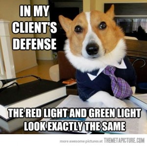 funny-lawyer-dog-red-light
