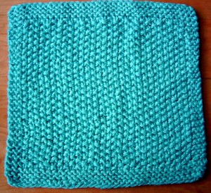 Seed Spot Dish Cloth