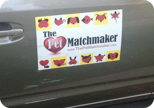 petmatchmaker