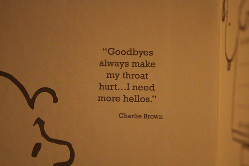 aww-charlie-brown-hello-goodbye