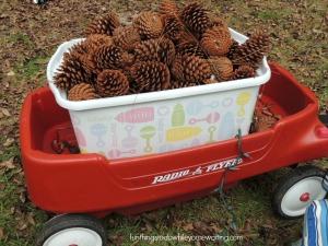 pine cone wagon