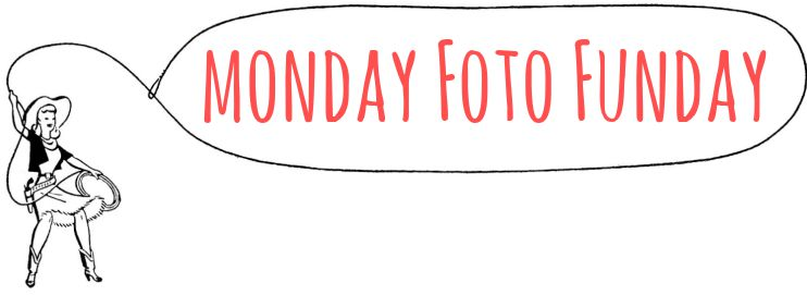 Monday Foto Friday Graphic
