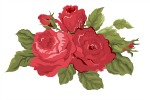A Mother's Day Rose Bumper